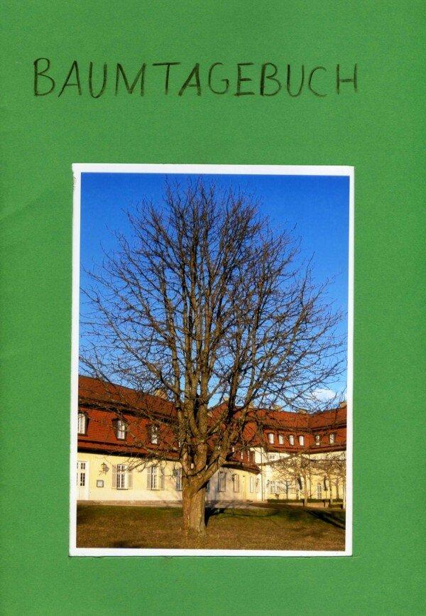 baumtagebuch 2 in der pflanzenkunde an der waldorfschule